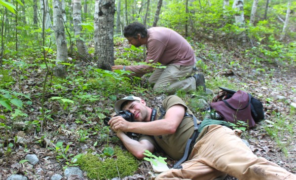 Dakota Smith (front), a student of the University of Maine at Machias, photographs a plant beside Abol Stream Trail while Glen Mittelhauser, the biologist leading the Plants of Baxter State Park Project, inspects a nearby plant on June 20, 2013, in Baxter State Park. Smith volunteered to participate in a one-week trip for the project.