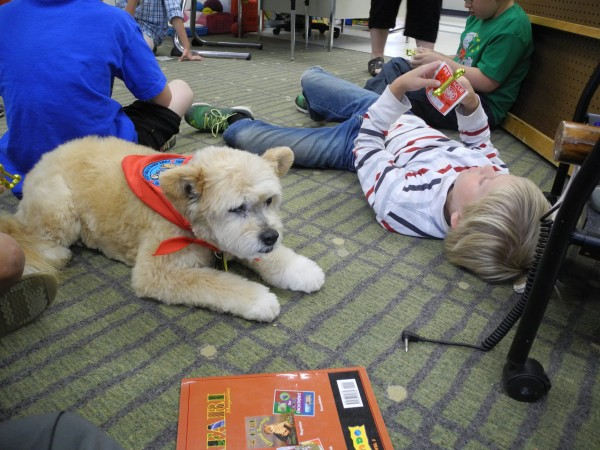 Teaka the dog is retiring after 14 years of going to school with her owner, elementary school teacher Page Dilts. Teaka is a trained therapy dog, and has helped children with reading, speech, feelings and more, according to school officials.