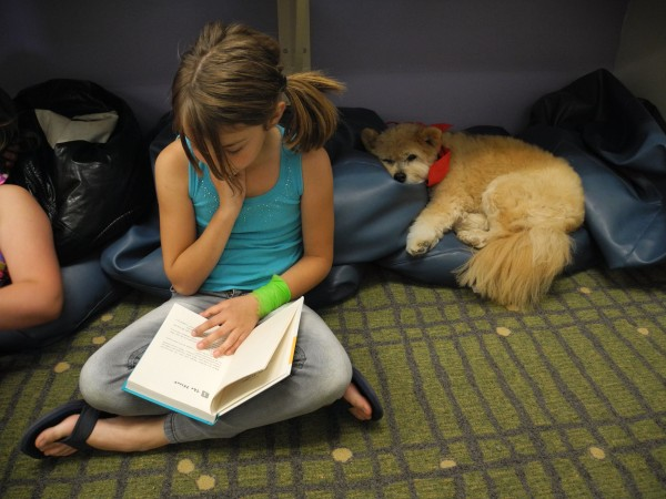 Teaka the dog especially likes listening to books about dogs, according to fourth graders at the Capt. Albert Stevens Elementary School, who said they will miss her when she retires from 14 years of coming to school to help them out.