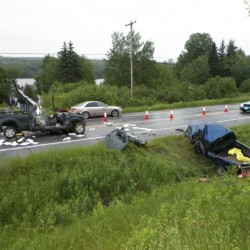 Ashland police chief, two others injured in moose collision