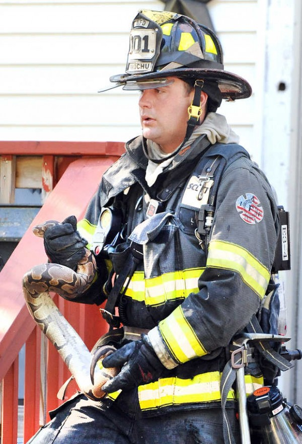 A fire on Field Avenue in Auburn on Monday morning may have been caused by a heating device used to keep snakes warm on the third floor of 54-56 Field Ave., according to Auburn fire Chief Frank Roma. &quotFrom the evidence I have seen so far, it would be consistent with the call we received.&quot