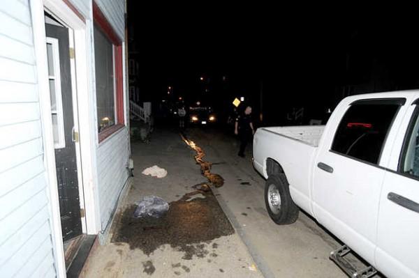 Witnesses said the brawl happened on the sidewalk shown here on Bartlett Street.