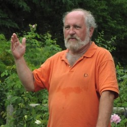 Glenn Jenks will lead a rose talk and tour at Merryspring on Tuesday, July 2 at 12:00 noon.