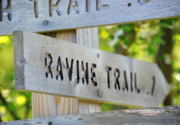 The trails at Fields Pond Audubon Center in Holden are all well marked and easy to follow.