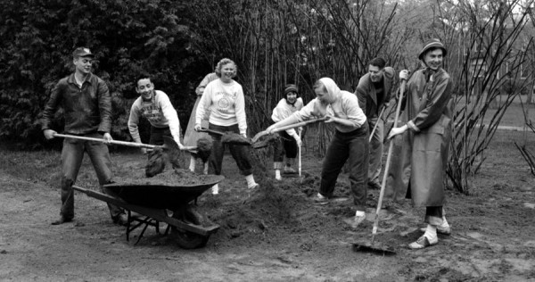One of the many Maine Day projects held on the University of Maine campus on Wednesday, May 13, 1953 was general work around the home of President Arthur A. Hauck. Volunteering with this particular group are (from left) John Pulsifer, East Harpswell; Bob Parker, White Plains, N.Y.; Lois Flood, Framingham, Mass.; Carol Loud, Waterville; Anne Burns, Sudbury, Mass.; Elliott Barker II, Waterville; and Sally Gay, Lexington, Mass.