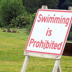 Fecal matter levels in York County swimming spot 'right off the scale'