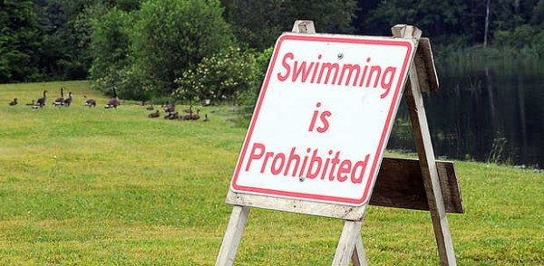 Lake Grove Park at the Lake Auburn outlet beach on Route 4 has opened as scheduled on Tuesday, however the water is closed to human swimming because of high E. Coli levels.