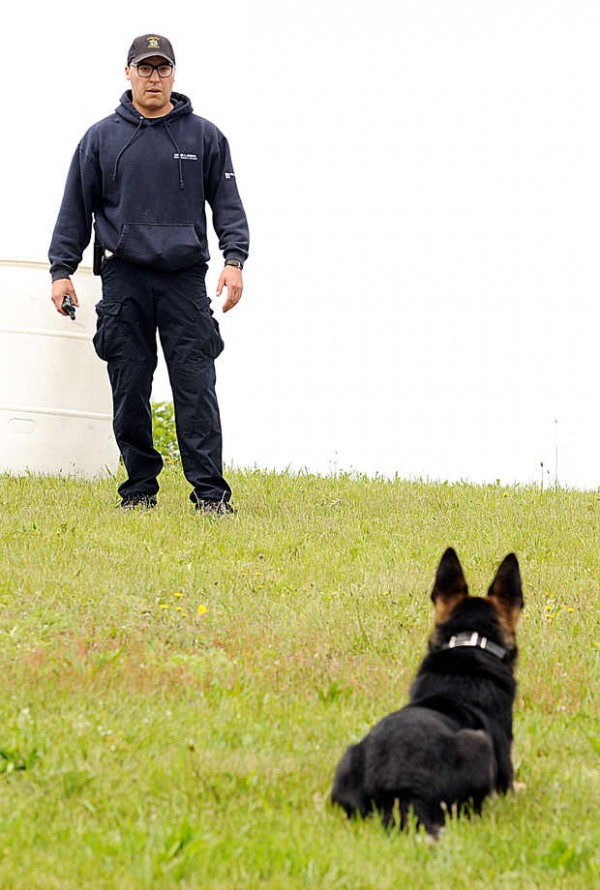 Auburn Police Officer Tyler Ham demonstrates Rocky's obedience skills in Vassalboro on Friday.