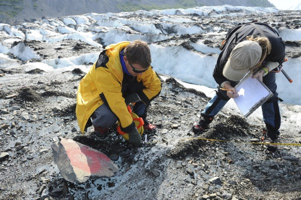Dr. Greg Berg (L) and Ms. Kelley Esh, anthropologists leading a specialized recovery team with the Joint POW/MIA Accounting Command, verify a location point as they assess a historic aircraft wreckage site at Colony Glacier, Alaska in this June 26, 2013 handout photo released to Reuters on July 8, 2013. An Alaska glacier is exposing remains from a military air tragedy six decades later. Relics from an Air Force cargo plane that slammed into a mountain in November 1952, killing all 52 servicemen on board, first emerged last summer on Colony Glacier, about 50 miles east of Anchorage.