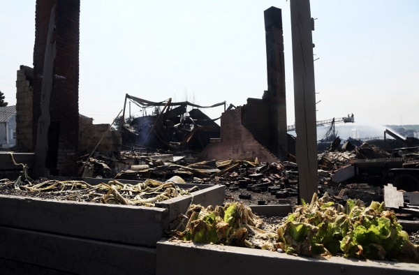 A burnt lettuce garden sits in front of a burnt out building, near the wreckage of a train derailment in Lac Megantic, Quebec, July 7, 2013.  A driverless freight train carrying tankers of petroleum products derailed at high speed and exploded into a giant fireball in the middle of the small Canadian town of Lac-Megantic early on Saturday, destroying dozens of buildings and leaving an unknown number of people feared missing.