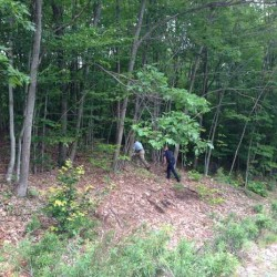 Androscoggin County Sheriff's Department Detective Sgt. William Gagne and Patrol Deputy Matt Tifft walk into the woods off Route 4 in Livermore near where a body was discovered Monday afternoon.