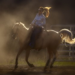 Team penning and sorting and rodeo events slated in Charleston