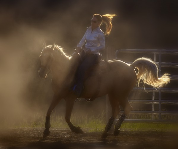 Heather Walsh, riding Annabelle's Gold, practices her skills in the late day sun at the Maple Lane Farm in Charleston on Saturday. BDN photo by Michael York