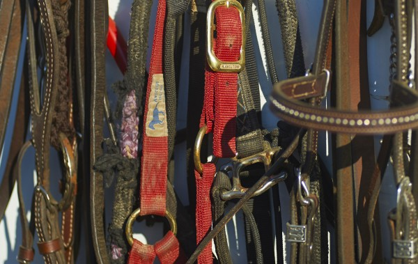 Tack gear hangs on a horse trailer at the Maple Lane Farm in Charleston on Saturday, July 13, during the Central Maine Team Penning event.  BDN photo by Michael York