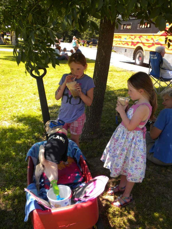 Sisters Lexi Furrow (right), 8, and Lucy Furrow, 5, pulled their dressed-up pug, Toomy, into the shade so they could enjoy root beer floats at the Orrington Old Home Week post parade expo on Saturday. July 13, 2013. Their mother, Katrina (not pictured), was the only person who rode a horse in the parade.