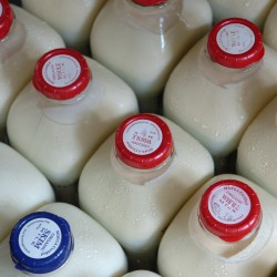 Small-scale raw milk deregulation law passes House, Senate