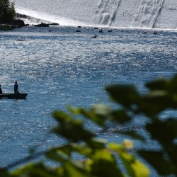 Fishermen enjoy a perfect summer day on the Penobscot River