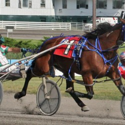 Maine native closes in on 11,000 career harness racing victories