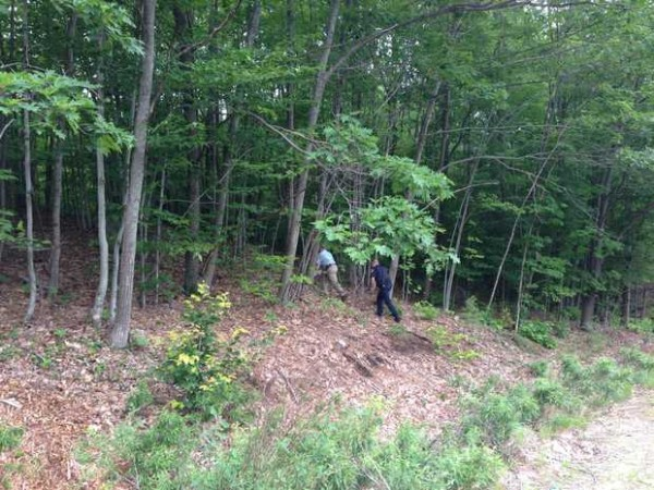 Androscoggin County Sheriff Department Detective Sgt. William Gagne and Patrol Deputy Matt Tifft walk into the woods near where a body was discovered in Livermore on Monday afternoon.