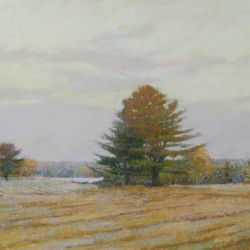Kathleen Galligan  &quotA Favored Field&quot  pastel on mounted paper