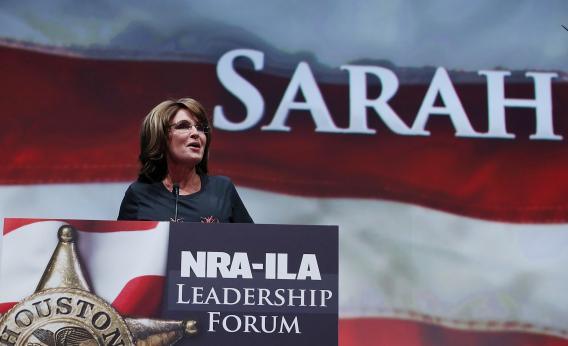 Liberals are all but begging for Sarah Palin to run for Senate in 2014.