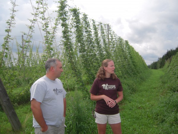 Jason Johnston and Krista Delahunty describe the growth of hops flowers into cones, which will be ready for harvest by Labor Day at their farm in Westfield.