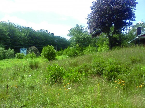 A proposed development would turn this Route 1 spot in Arundel into a seasonal cottage resort.