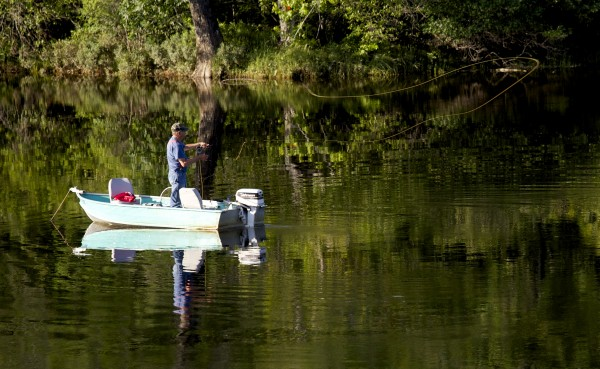 An angler tries his luck on the West Branch of the Penobscot River near Abol Bridge recently.