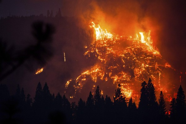 The Rim Fire burns near Buck Meadows, Calif., on Saturday.