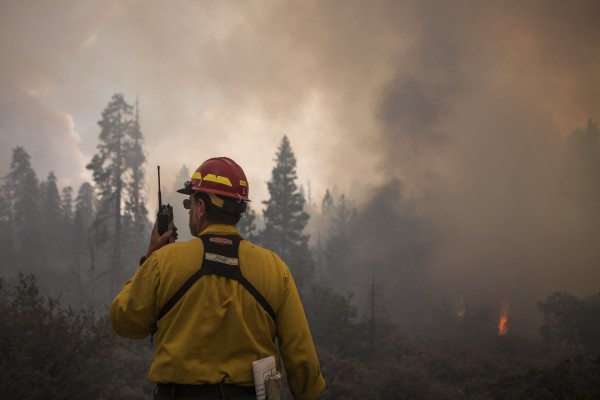 US Forest Service fire captain Pete Irvine monitors the eastern edge of the Rim Fire in Yosemite National Park, Calif., on Saturday.
