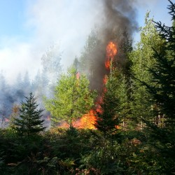 Forest rangers battling 'suspicious' brush fire in Washington County