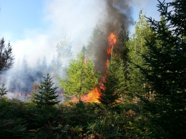 A fire allegedly caused by arson in Indian Township, according to Maine Forest Rangers.