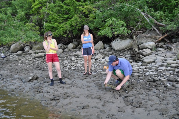 Bowdoin College students (from left) Teresa Withee, Elizabeth Brown and Nathaniel Niles work to calm American eels before measuring them on the shores of Merrymeeting Bay.