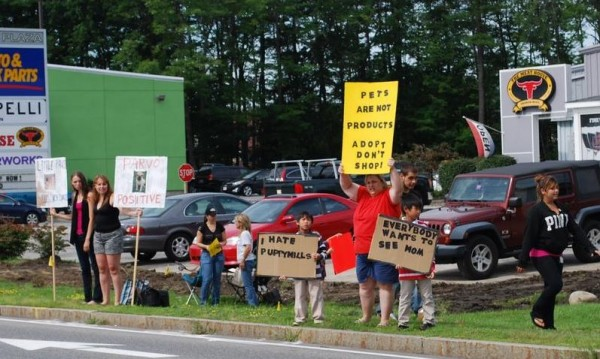 Protesters gather in August outside Little Paws in Scarborough after a second quarantine on puppy sales was issued by the state. The quarantine has now been lifted, but the store is likely to close.