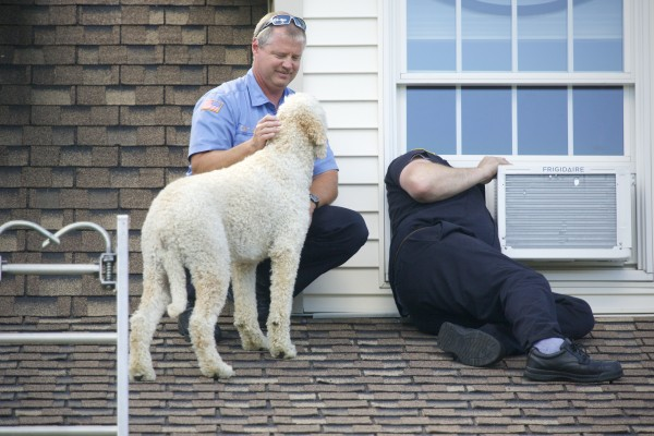 Brewer Fire Capt. Chris Dore (left) and Brewer Firefighter Kevin Pelotte reach out to a dog on a home's roof in Brewer on Thursday.