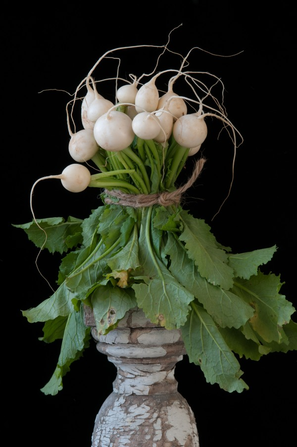 Hakurai Turnips