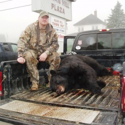 Bear hunting a key component in management plan