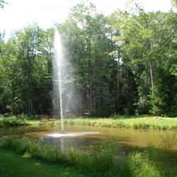 The pond and fountain at John J. Coughlin Memorial Park
