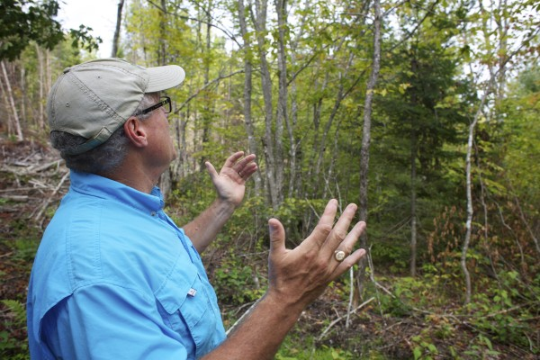 Forester Mark Leathers shows some of the areas in northern Penobscot County where loggers have used selective cutting techniques to encourage forest growth. Elliotsville Plantation Inc. has opened 40,000 acres to hunting and other recreational use.