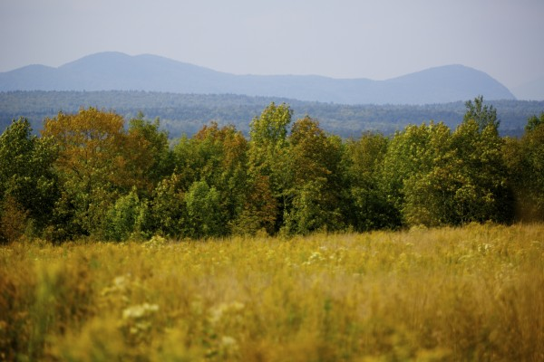 Elliotsville Plantation Inc. has opened 40,000 acres to hunting and other recreational use.