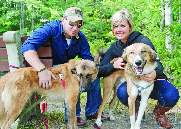 Chris Chiasson and wife Anna Maria Cannan with Alphy and Grizz, two &quotkuchi&quot dogs they rescued from Afghanistan, where Chris was stationed. In trying to help bring a puppy home for Chris, Canna created Puppy Rescue Mission, which recently celebrated its 500th rescued dog with a party in Kennebunk.