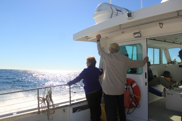 Vicki Aycock of Dillsburg, Pa., scans the ocean for signs of whales with her husband, Bruce Brolle, while aboard the Osprey, College of the Atlantic's research vessel, on Sept. 19, 2013, off the coast of Maine near Mount Desert Island. They were two of the 13 people on the whale-watching tour.