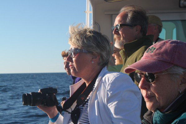 Carolyn Smith of Cambridge, England, holds up her camera to photograph a group of Atlantic white-sided dolphins on Sept. 19, 2013, during a whale-watching tour out of Bar Harbor on the Osprey, the College of the Atlantic's research vessel. Standing closest to her is the captain, Toby Stephenson, and Pat Tracey of Brick, N.J.