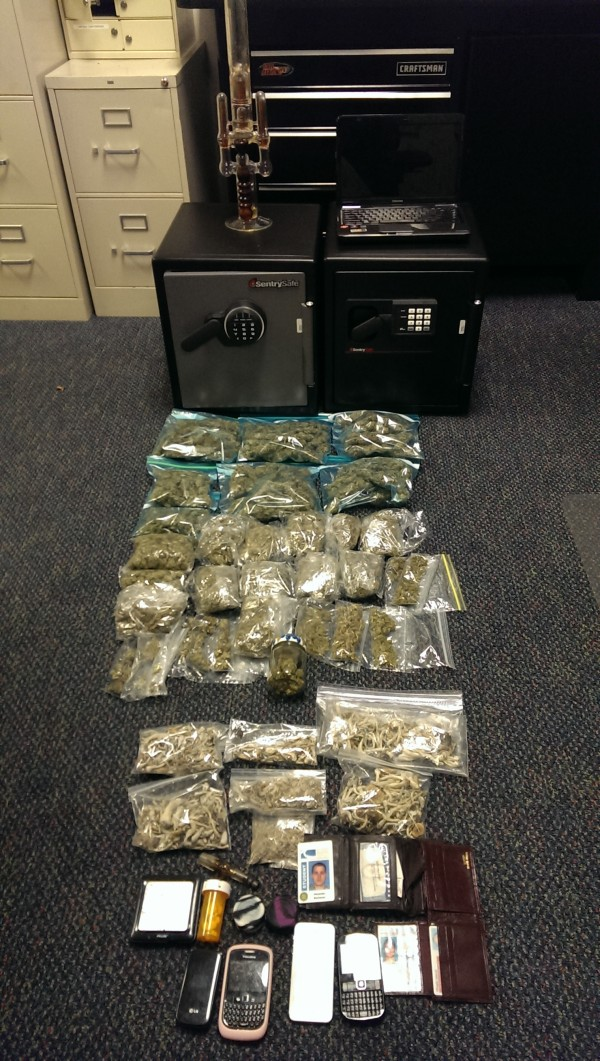 Approximately 4.5 pounds of marijuana were seized in a drug bust in Falmouth on Wednesday.