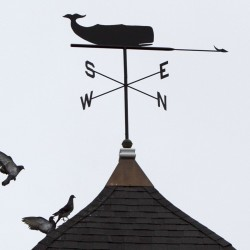 A pigeon joins its flock below a whale weather vane on top of the United Church of Christ in Freeport.