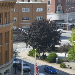 Bangor rolls out plan for West Market Square makeover; possible downtown street closure