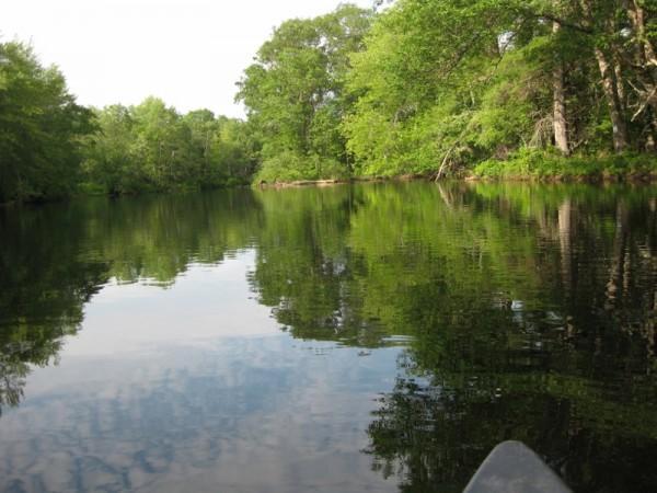 Canoeing along Pushaw Stream