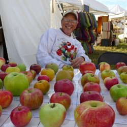 John Bunker with a display of Maine apples.