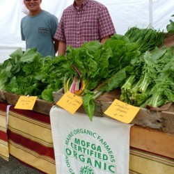 Josh Oxley at the Belfast Farmers Market with apprentice Thong Pham.