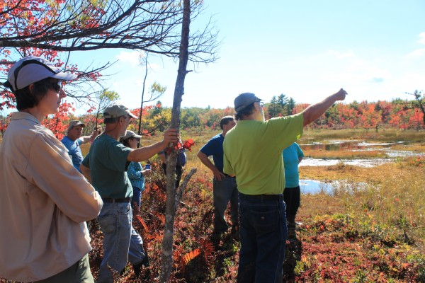 The Saco Valley Land Trust lead a nature walk to a cranberry bog located on one of their many easements on Sept. 28 in Biddeford as one of the many events scheduled for the fourth Great Maine Outdoor Weekend.